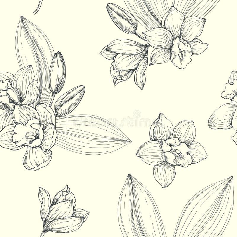 Modèle sans couture de vintage floral de vecteur Tex botanique tiré par la main illustration de vecteur