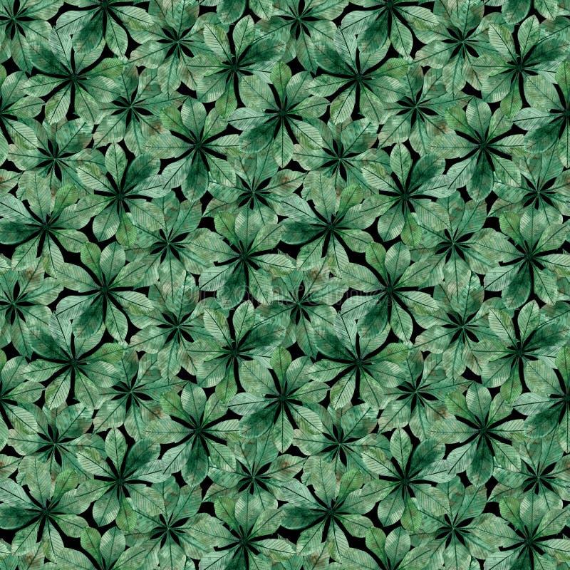 Modèle sans couture des feuilles circulaires de châtaigne Illustration d'aquarelle illustration de vecteur