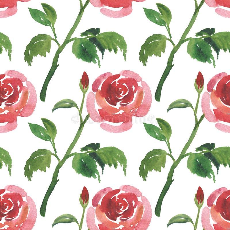 Modèle sans couture des fleurs de rose de rouge d'aquarelle illustration libre de droits