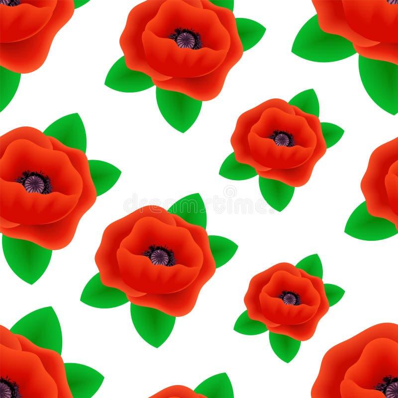 Modèle sans couture des fleurs réalistes de pavot illustration libre de droits
