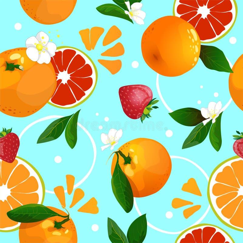 Modèle sans couture des mandarines photos libres de droits