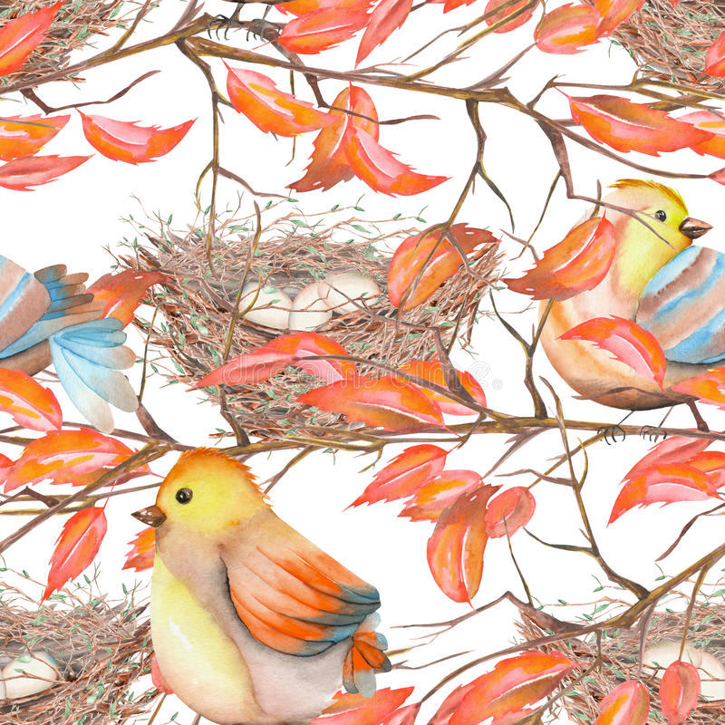 Download Modèle Sans Couture Des Oiseaux Et Des Nids D'aquarelle Illustration Stock - Illustration du conception, figure: 76078958
