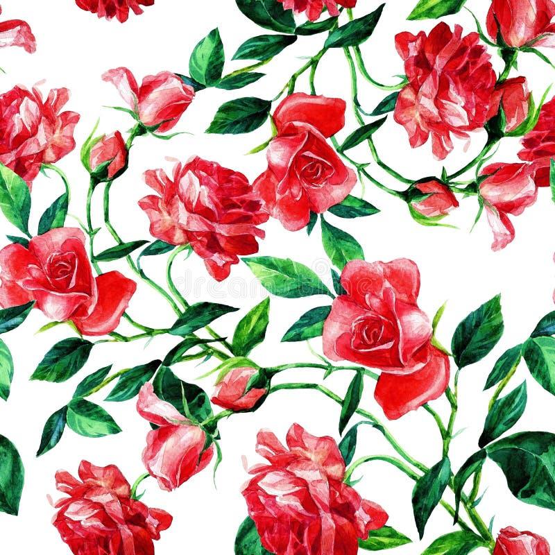 Modèle sans couture des roses dans l'aquarelle photo stock