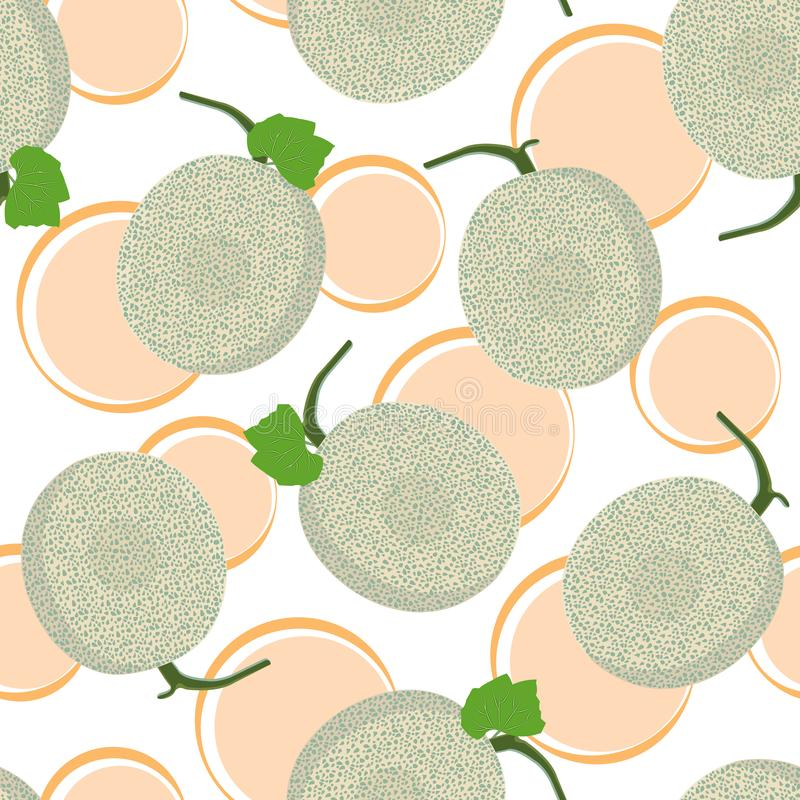 Modèle sans couture entier de melon sur le fond blanc, fond frais de modèle de melon de cantaloup, vecteur de fruit illustration stock