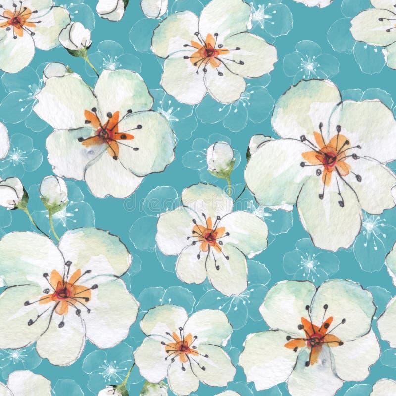 Modèle sans couture floral avec les fleurs blanches 5 illustration stock