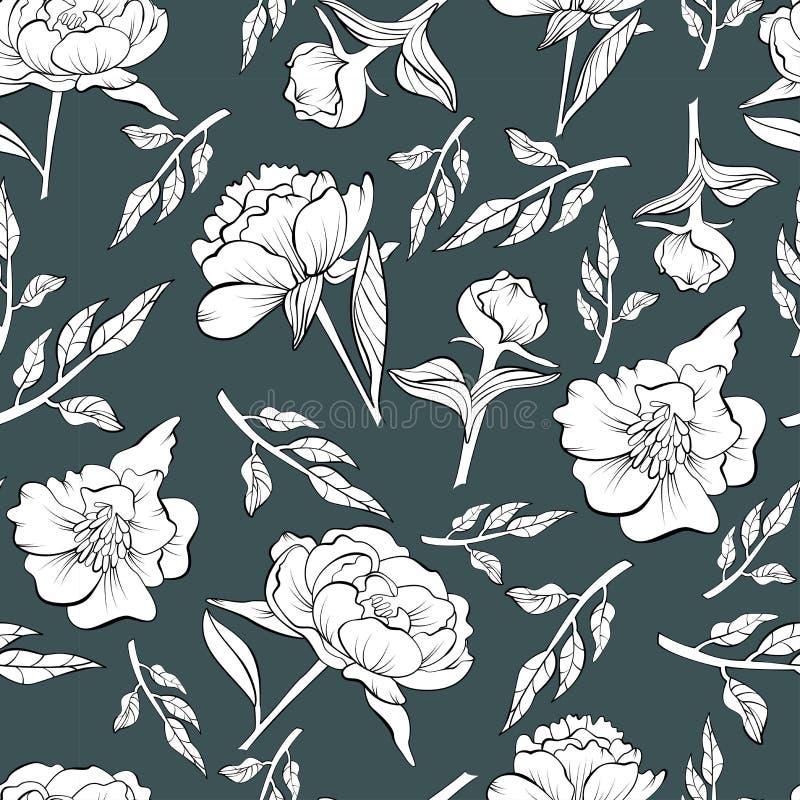 Modèle sans couture floral de pivoine dessiné dans le croquis illustration de vecteur