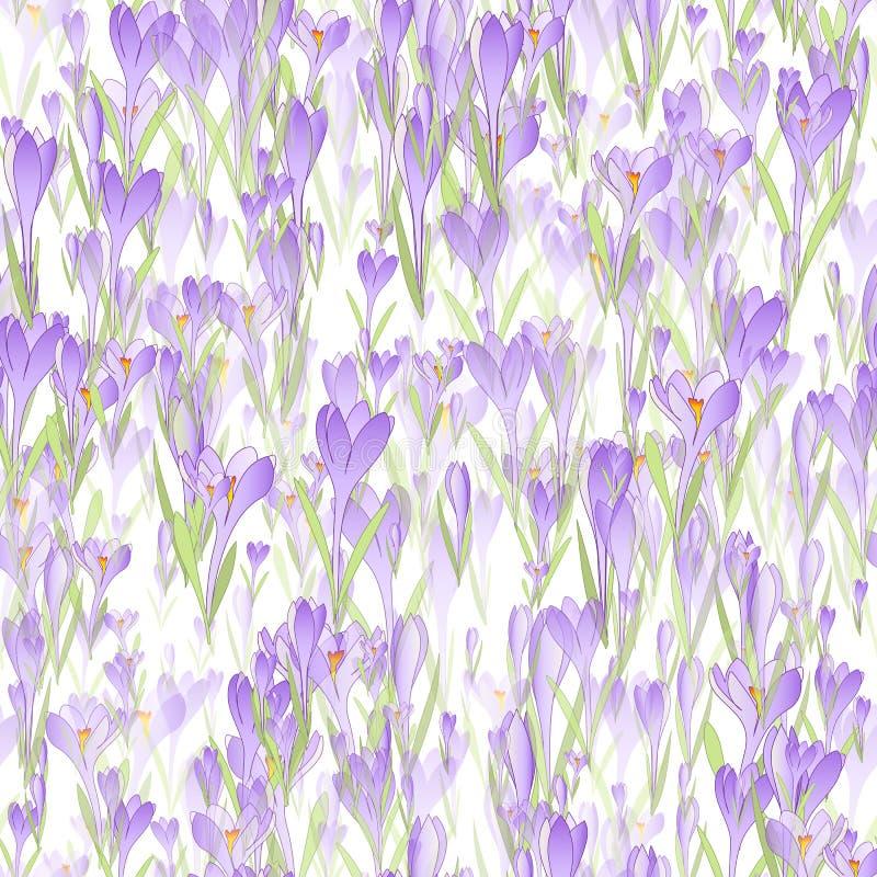 Modèle sans couture floral de vecteur illustration libre de droits