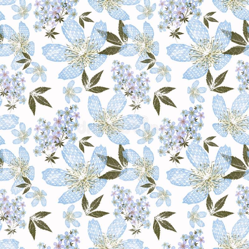 Modèle sans couture floral, fond mignon de blanc de fleurs illustration stock