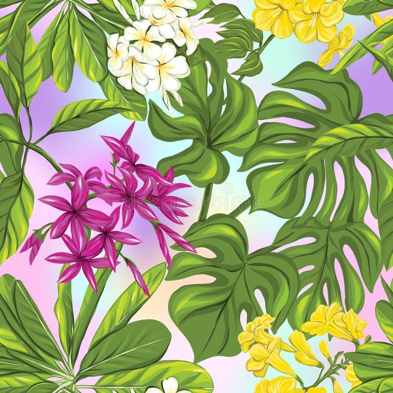 Modèle sans couture, fond avec des plantes tropicales : monstera, strelitzia, bouganvillée, illustration libre de droits