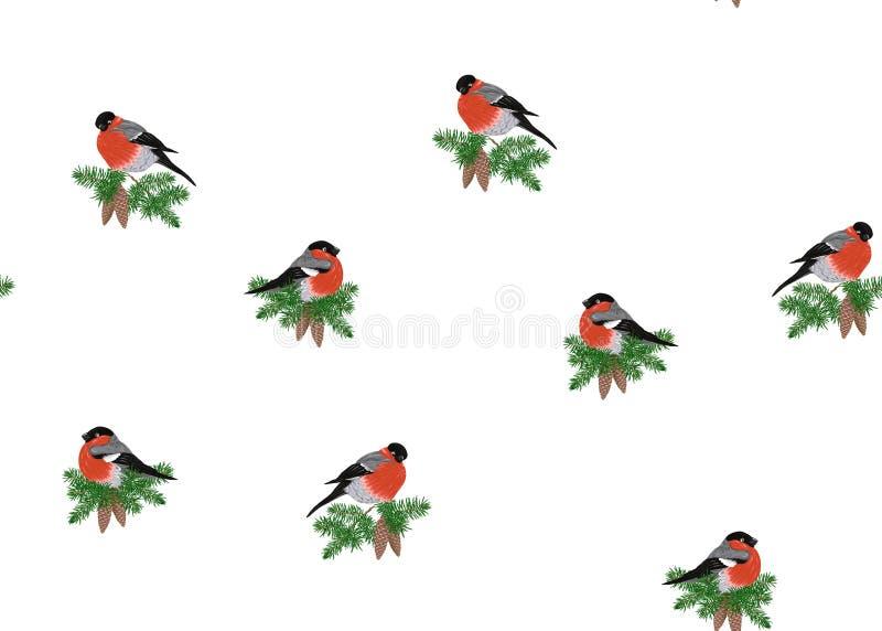 Modèle sans couture, fond avec le bouvreuil sur une branche de pin avec un cône illustration libre de droits