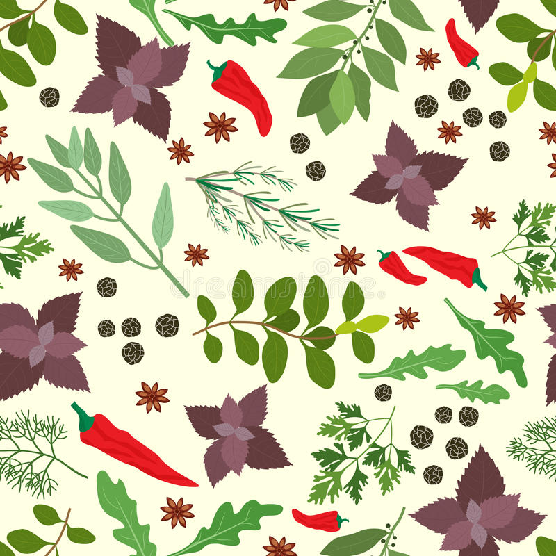 Modèle sans couture frais d'herbes et d'épices illustration stock