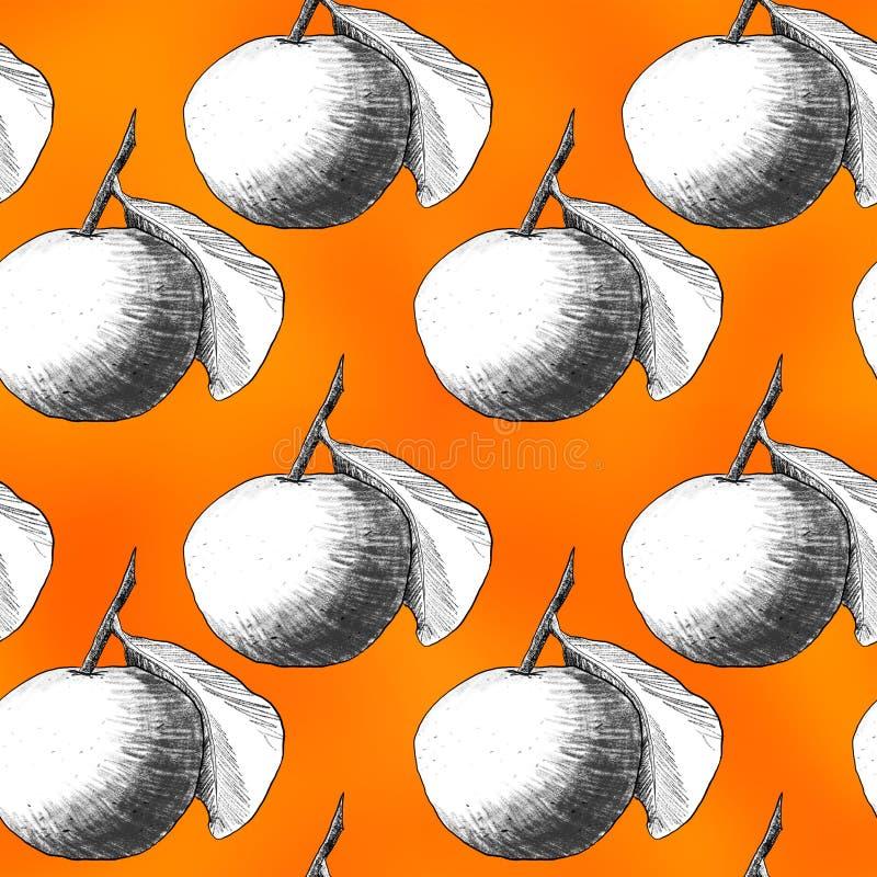 Modèle sans couture : mandarines ou pommes, dessins au crayon uniques des fruits combinés dans de belles compositions illustration de vecteur