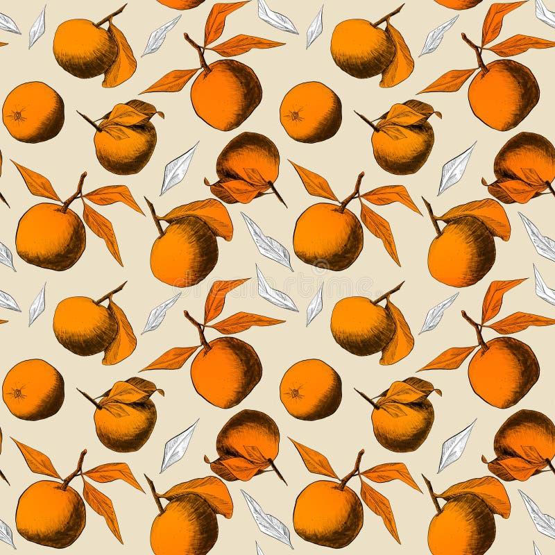 Modèle sans couture : mandarines ou pommes, dessins au crayon uniques des fruits et feuilles combinées dans de belles composition illustration de vecteur