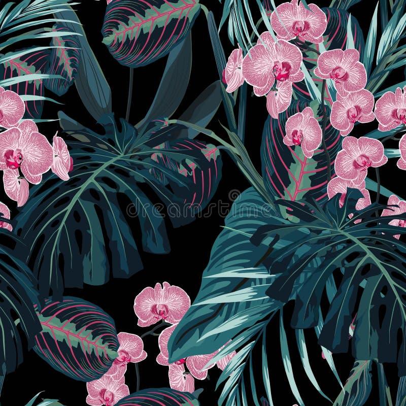 Modèle sans couture, palmettes vert-foncé de couleurs et fleurs roses tropicales d'orchidée sur le fond noir illustration libre de droits