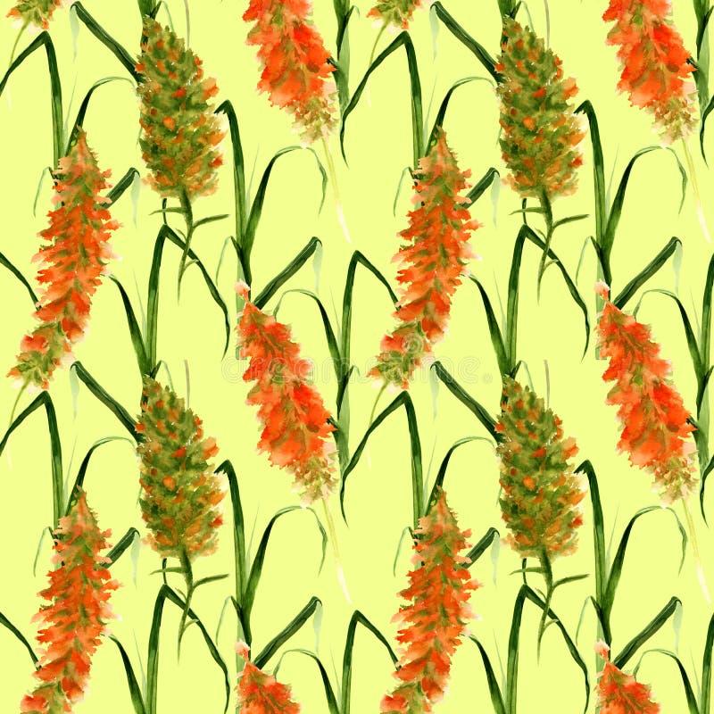 Modèle sans couture tiré par la main avec les fleurs sauvages d'aquarelle de pré, les herbes et les herbes jaunes et vertes sur u illustration stock