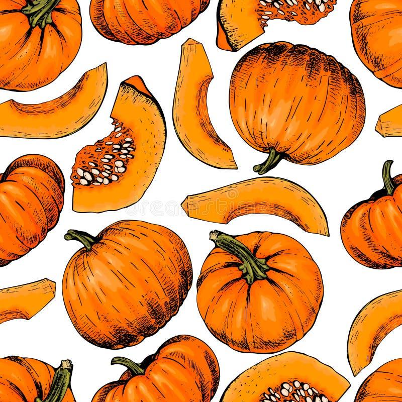 Modèle sans couture tiré par la main de vecteur des potirons Légumes de ferme Art coloré gravé Objet esquissé organique illustration libre de droits