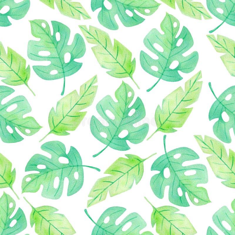 Modèle sans couture tropical d'été d'aquarelle illustration de vecteur