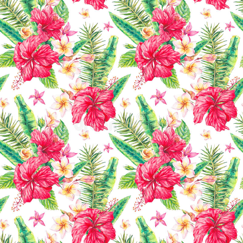Modèle sans couture tropical floral de vintage d'aquarelle illustration de vecteur