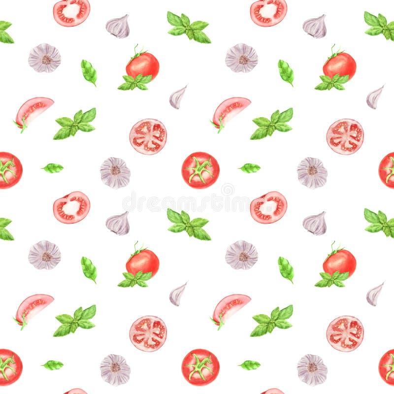 Modèle sans couture végétal d'aquarelle sur le fond blanc Ail, feuille de basilic, tomate illustration libre de droits