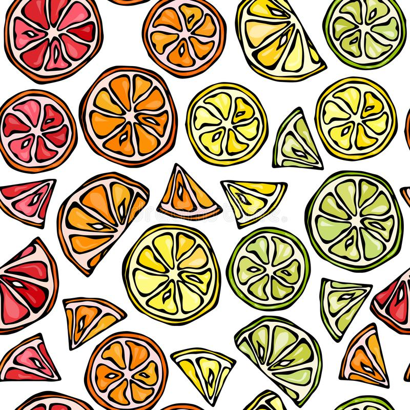Modèle sans fin sans couture d'agrume Citron, chaux, orange, Grapefruite Illustration tirée par la main Style de griffonnage de S illustration stock