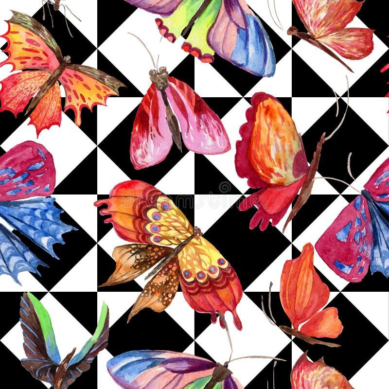 Modèle sauvage d'insecte de papillon exotique dans un style d'aquarelle illustration de vecteur