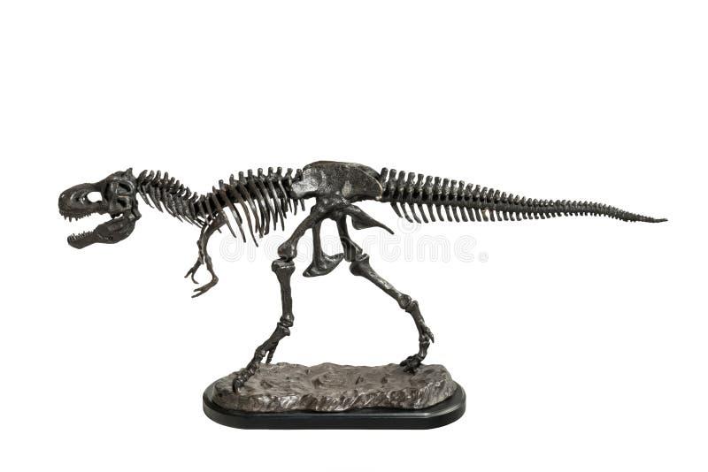 Modèle squelettique en métal de tyrannosaure-Rex de dinosaure images libres de droits