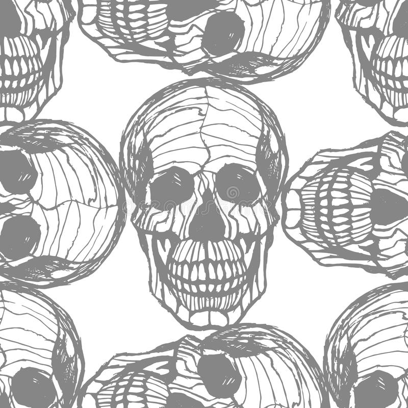 Modèle tiré par la main détaillé de crâne illustration de vecteur
