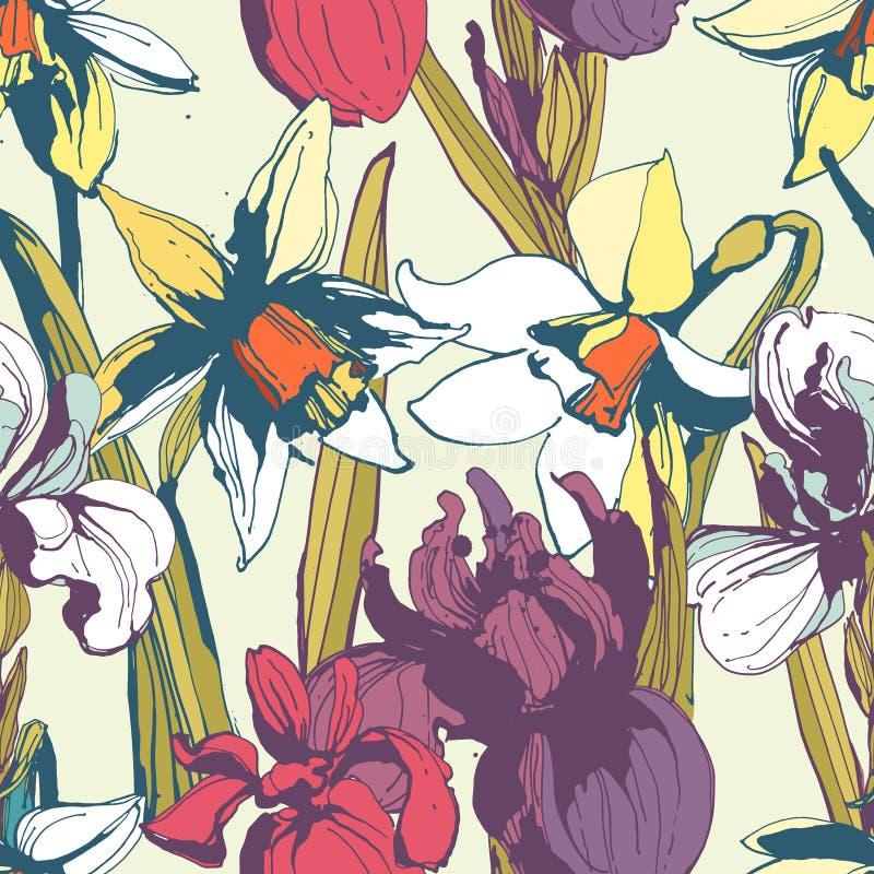 Modèle tiré par la main sans couture de fleur d'iris floral de narcisse Colore illustration de vecteur