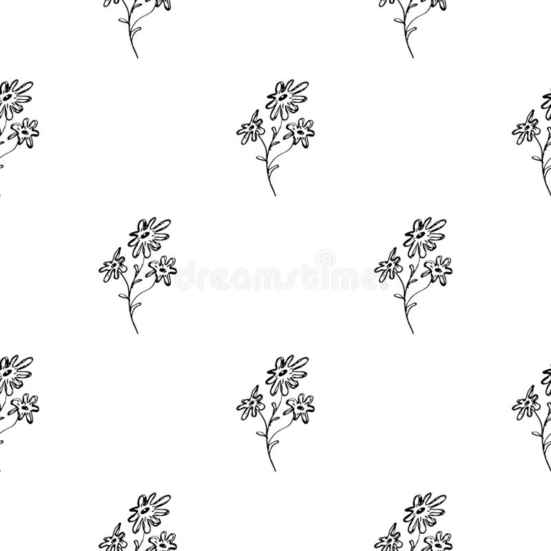 Modèle tiré par la main sans couture des fleurs abstraites de marguerites d'isolement sur le fond blanc Dirigez l'illustration fl illustration stock