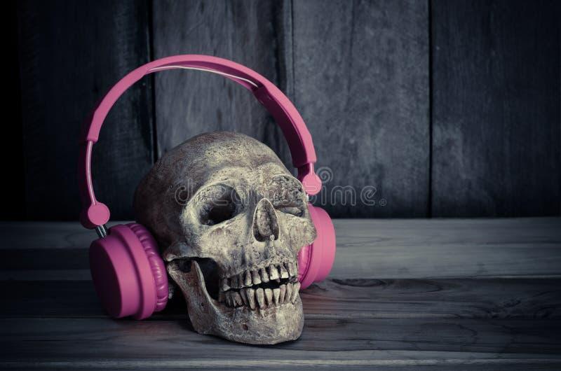 Modèle toujours humain de crâne de la vie avec les écouteurs roses sur le fond en bois images libres de droits