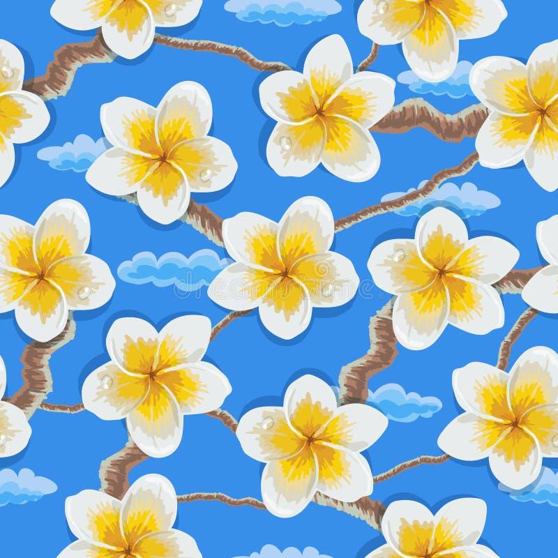 Modèle tropical de plumeria de fleurs illustration de vecteur