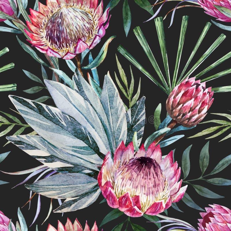 Modèle tropical de protea de vecteur illustration stock