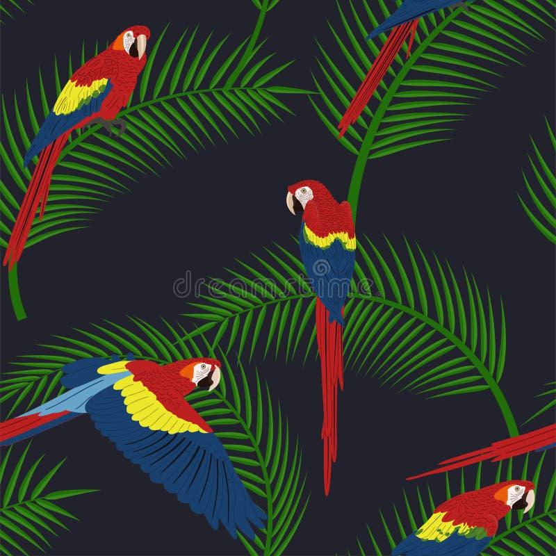 Modèle tropical sans couture sur un fond noir illustration stock