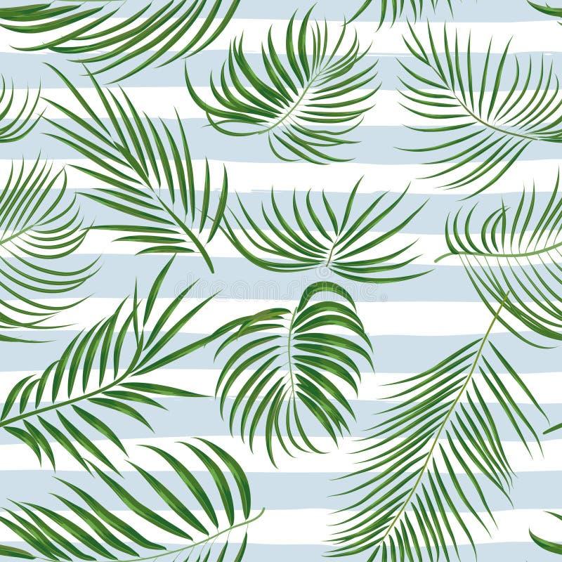 Modèle tropical tiré par la main sans couture avec des palmettes, feuille exotique de jungle sur le fond blanc illustration de vecteur