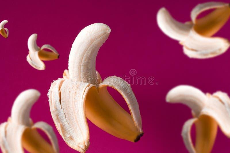 modèle volant de bananes sur un fond rose vibrant photographie stock libre de droits