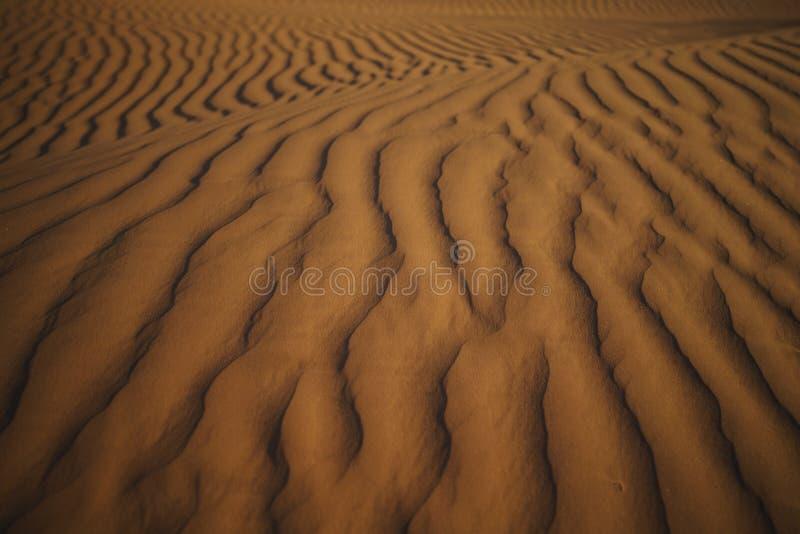 Modèles de dunes de désert photo stock