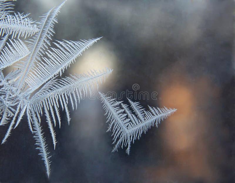 Modèles de glace image stock