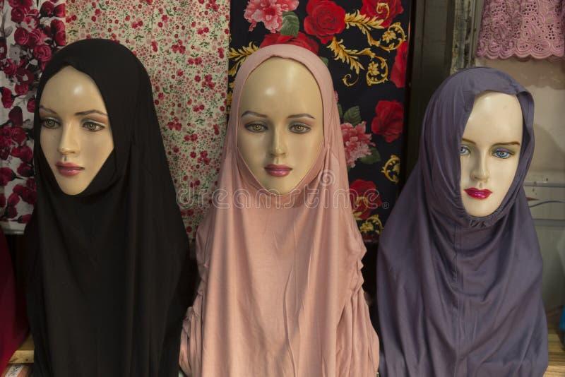 Modèles de Hijab image stock