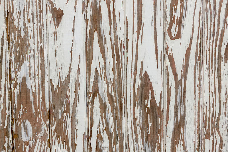Modèles et textures de moule sur la structure en pierre superficielle par les agents photo stock