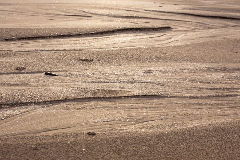 Download Modèles Naturels De Sable En Plage Photo stock - Image du arénacé, seashore: 56487566