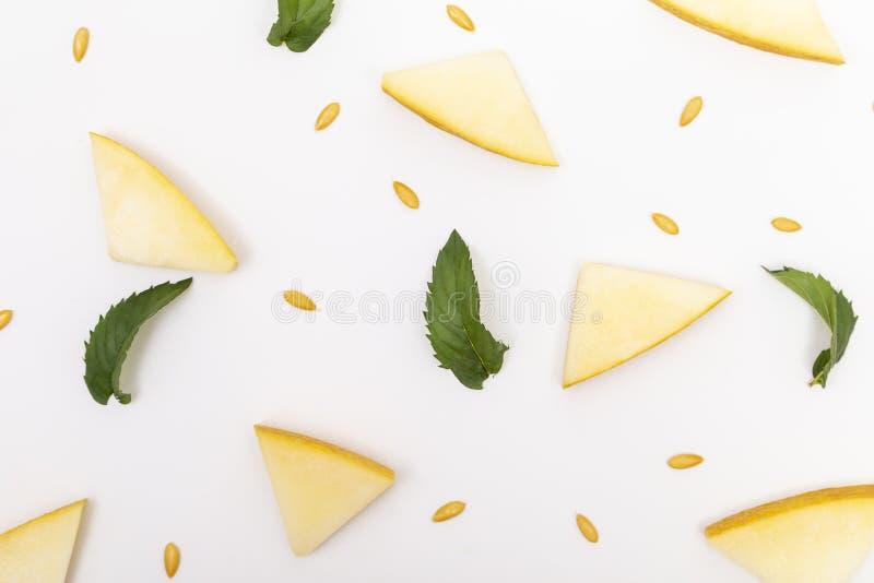 Mod?le de morceaux et de graines de melon image libre de droits
