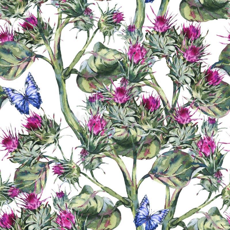 Mod?le de seamles de chardon d'aquarelle avec les papillons bleus, fleurs sauvages, herbes de pr? illustration libre de droits