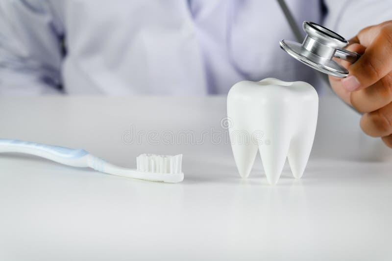 Mod?le dentaire de concept dentaire et outils dentaires de dentiste d'hygi?ne d'?quipement dentaire photo stock