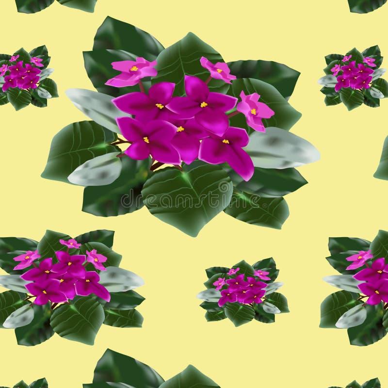 Mod?le des plantes d'int?rieur fleurissantes sur un fond color? illustration de vecteur