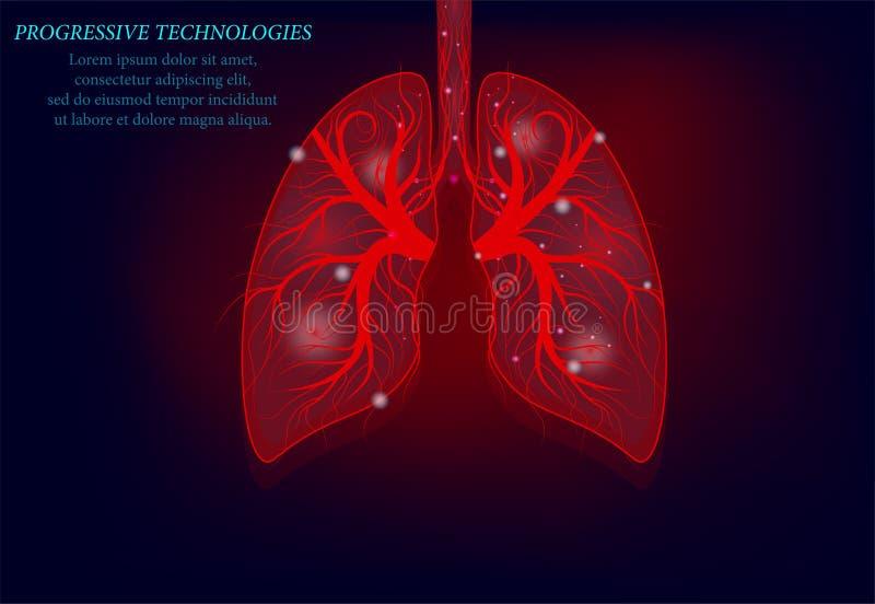 Mod?le sain de m?decine des poumons 3d bas poly Technologies progressives Les poumons humains ont des veines et de divers nerfs T illustration de vecteur
