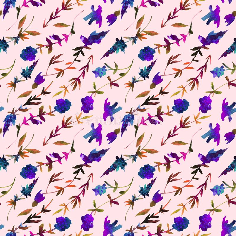 Mod?le sans couture d'aquarelle florale Modèle peint à la main avec le thym de wildflowers image stock