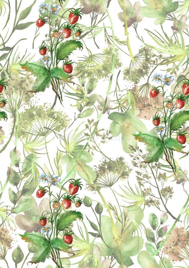 Mod?le sans couture d'aquarelle, fond avec un mod?le floral Beaux dessins de cru des usines, fleurs, branche de saule, baie illustration libre de droits