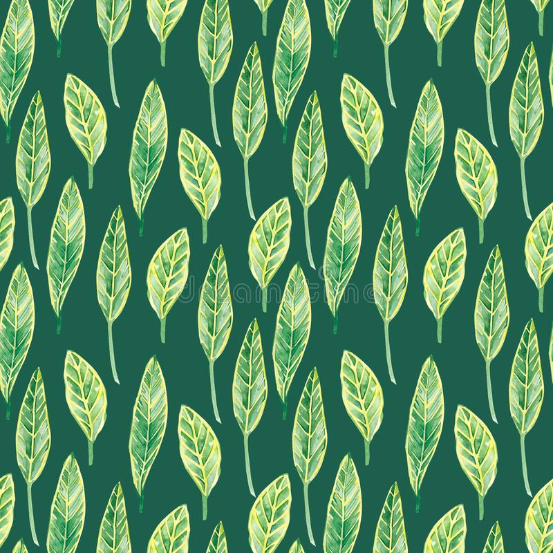 Mod?le sans couture de feuilles tropicales d'aquarelle, copie exotique color?e d'?t? pour le tissu de textile et papiers peints illustration stock