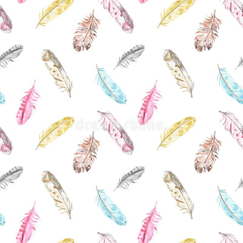 Mod?le sans couture de plumes d'oiseau d'aquarelle dans des couleurs en pastel sur le fond blanc Illustration ethnique tir?e par  illustration libre de droits