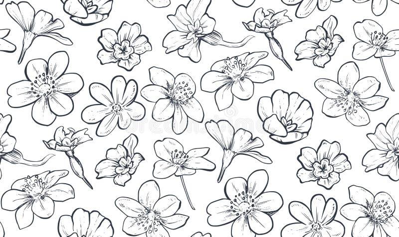Mod?le sans couture de vecteur avec les fleurs et les feuilles tir?es par la main de ressort illustration de vecteur